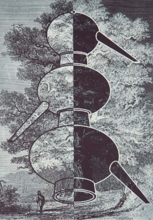 Alchemy and Nature. Tree of Life 3, Photogravure with Chine Collet, 2008