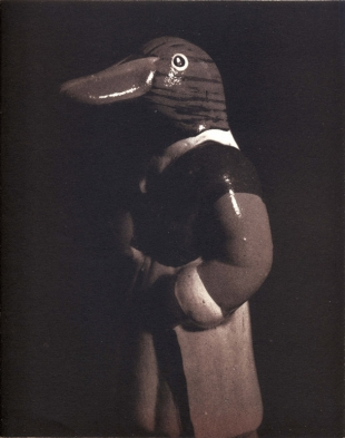 Duck, Duotone Collotype, 2004