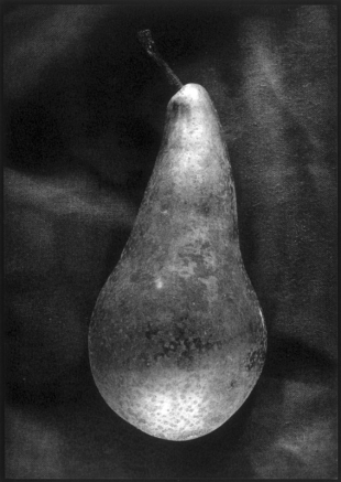 Pear, Duotone Collotype, 2000