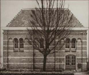 Tree & Building, Duotone Collotype, 2008