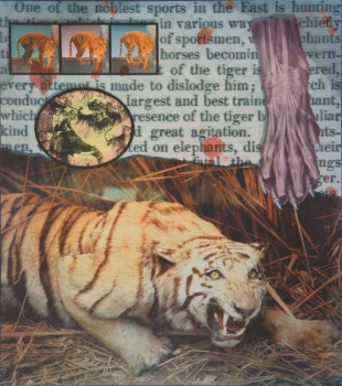 Tyger Tyger, Colour Collotype, 2000